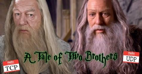 ataleoftwobrothers